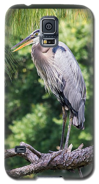 Great Blue Heron I Galaxy S5 Case