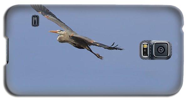 Great Blue Heron In Flight-2 Galaxy S5 Case