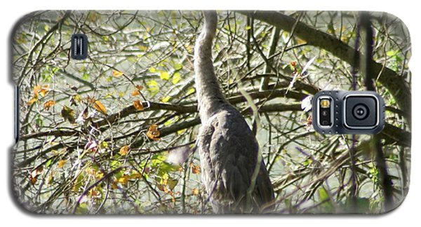 Galaxy S5 Case featuring the photograph Great Blue Heron by Karen Silvestri
