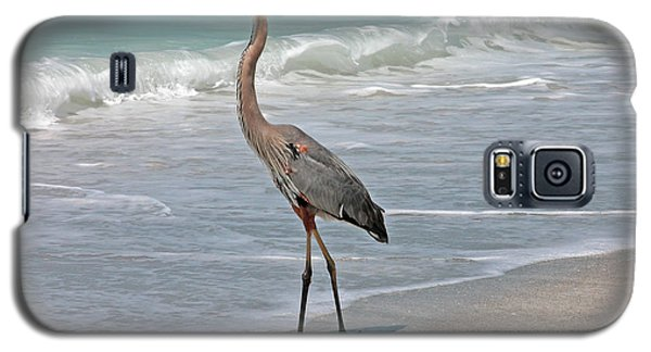 Great Blue Heron On Beach Galaxy S5 Case by Mariarosa Rockefeller