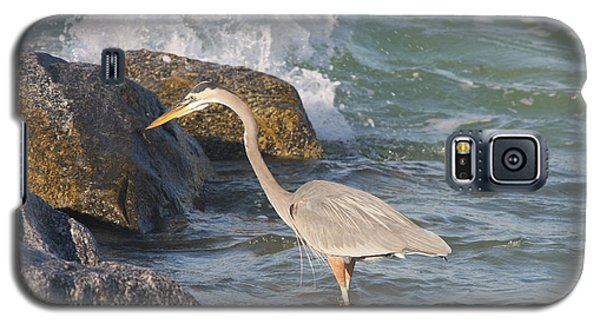 Galaxy S5 Case featuring the photograph Great Blue Heron On The Prey by Christiane Schulze Art And Photography