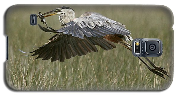 Galaxy S5 Case featuring the photograph Great Blue Heron With Lunch by Myrna Bradshaw