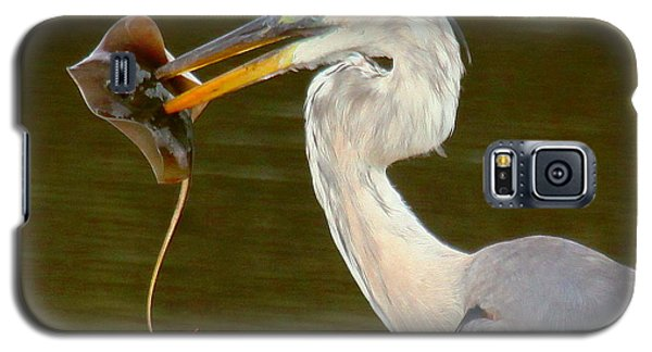 Galaxy S5 Case featuring the photograph Great Blue Heron With Stingray by Myrna Bradshaw