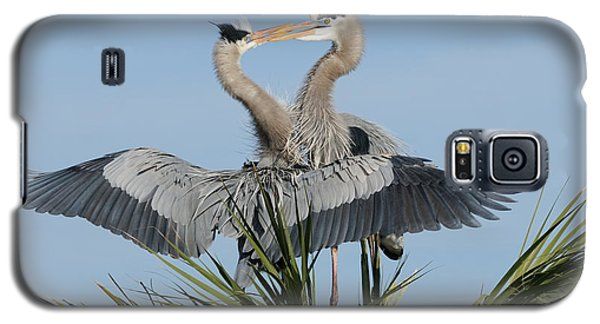 Great Blue Herons Courting Galaxy S5 Case