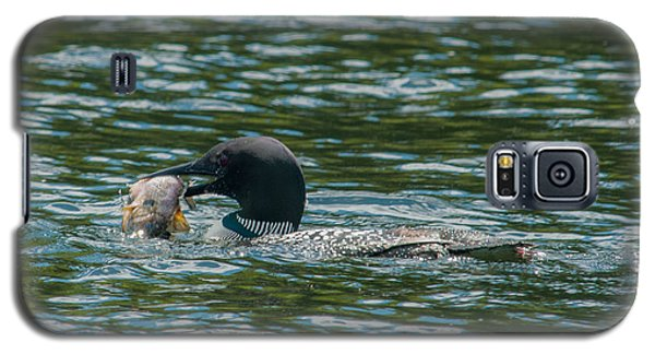 Galaxy S5 Case featuring the photograph Great Catch by Brenda Jacobs