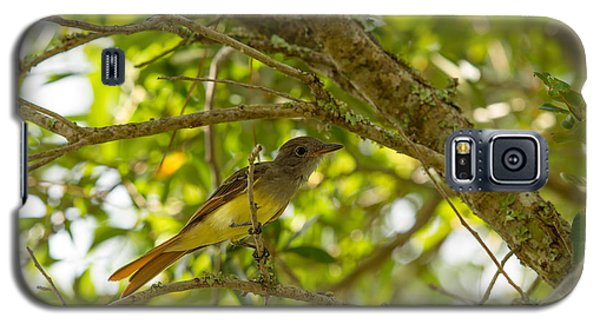 Galaxy S5 Case featuring the photograph Great Crested Flycatcher by Doug McPherson