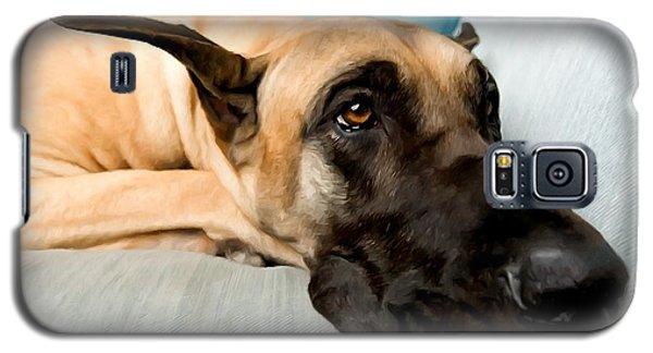 Great Dane Dog On Sofa Galaxy S5 Case