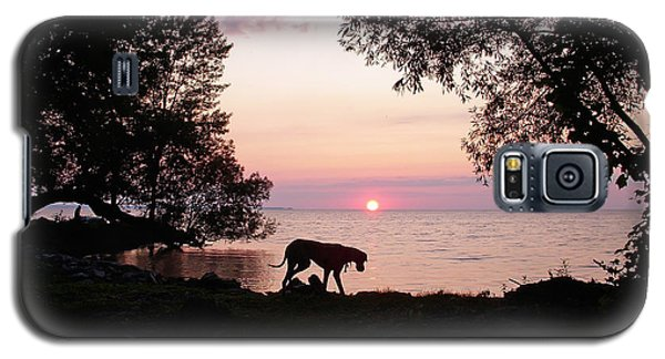 Galaxy S5 Case featuring the photograph Great Dane Sunset by Aimee L Maher Photography and Art Visit ALMGallerydotcom