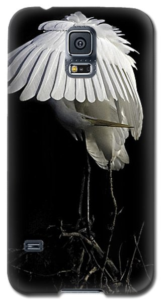 Great Egret Bowing Galaxy S5 Case