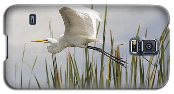 Galaxy S5 Case featuring the photograph Great Egret by David Grant