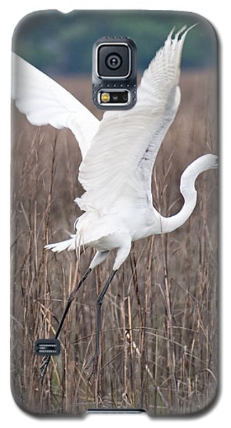 Great Egret In Flight Galaxy S5 Case