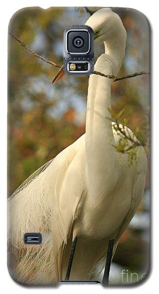 Great Egret Impressions Galaxy S5 Case