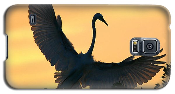 Galaxy S5 Case featuring the photograph  Sunset Ballet by John F Tsumas