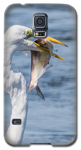 Great Egret With Fish Galaxy S5 Case by Susi Stroud
