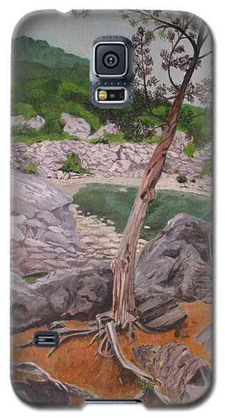 Great Falls IIi Galaxy S5 Case by Hilda and Jose Garrancho