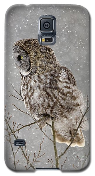 Great Grey Hunter Galaxy S5 Case