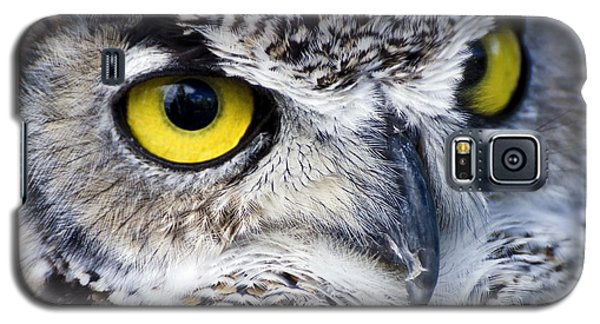 Great Horned Closeup Galaxy S5 Case