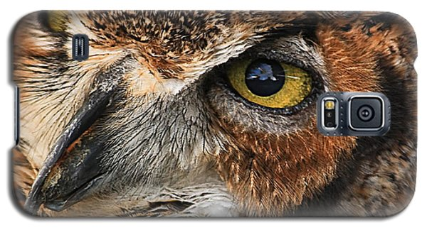 Galaxy S5 Case featuring the photograph Great Horned Owl by Tammy Schneider