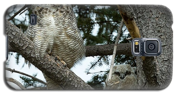 Great Horned Owls Galaxy S5 Case