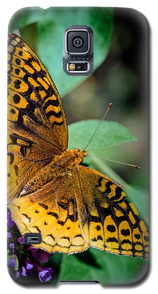 Great Spangled Fritillary  Galaxy S5 Case