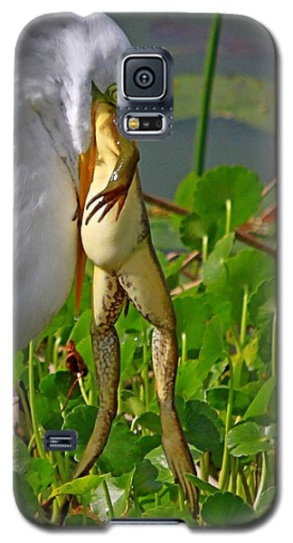 Great White Egret And Frog Galaxy S5 Case