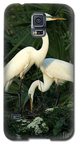 Great White Egret Mates Galaxy S5 Case
