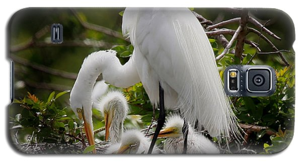 Great White Egret Nesting Galaxy S5 Case
