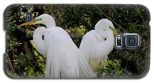 Galaxy S5 Case featuring the photograph Great White Egret Pair In Breeding Plumage by Jeanne Kay Juhos
