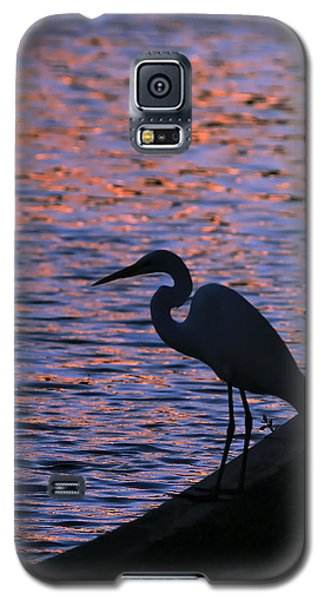 Great White Egret Silhouette  Galaxy S5 Case