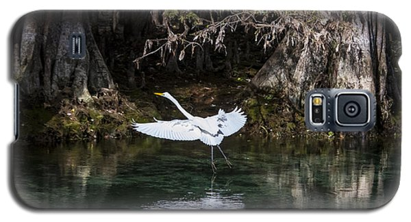 Great White Heron In Flight Galaxy S5 Case