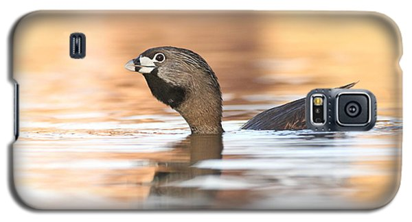 Galaxy S5 Case featuring the photograph Grebe A Calling by Ruth Jolly