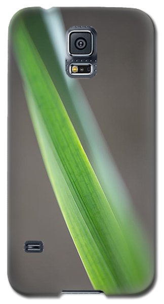 Green Abstract Galaxy S5 Case