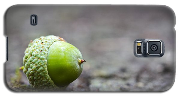 Green Acorn. Galaxy S5 Case