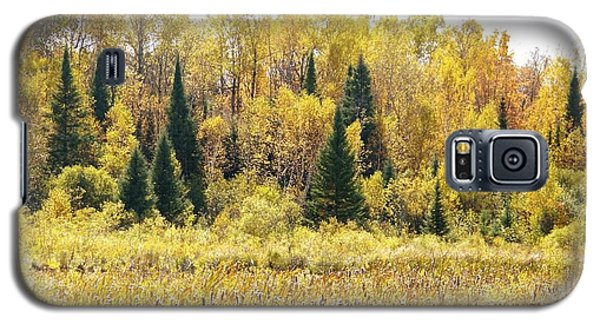 Galaxy S5 Case featuring the photograph Green Amongst The Gold by Susan Crossman Buscho