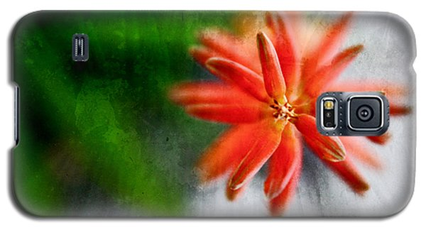 Galaxy S5 Case featuring the photograph Green And Orange by Sandy Moulder