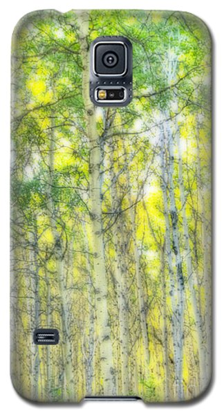 Green And Yellow Galaxy S5 Case
