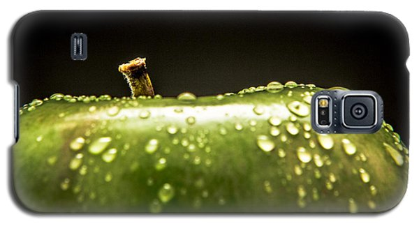 Galaxy S5 Case featuring the photograph Green Apple by Wade Brooks