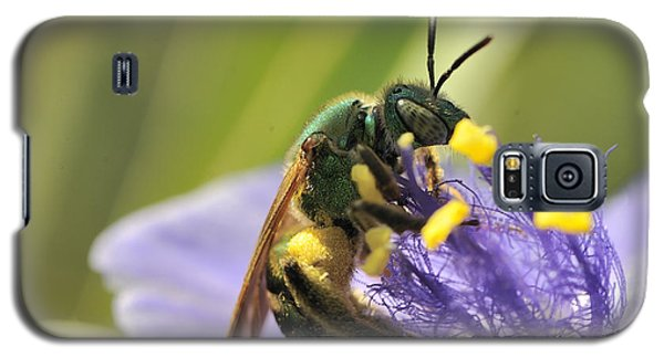Green Bee Galaxy S5 Case