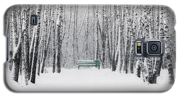 Green Bench Galaxy S5 Case by Alexander Senin