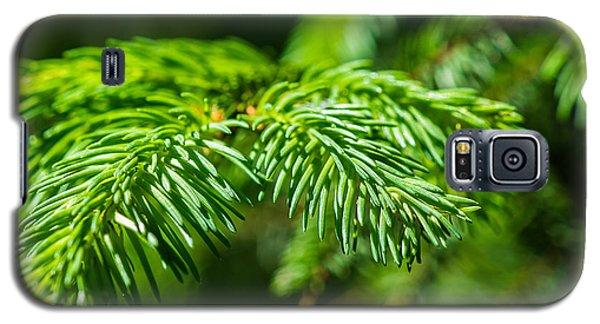 Green Christmas Tree 2 Galaxy S5 Case by Alexander Senin