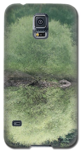 Green Clam Reflection Galaxy S5 Case by Phoenix De Vries