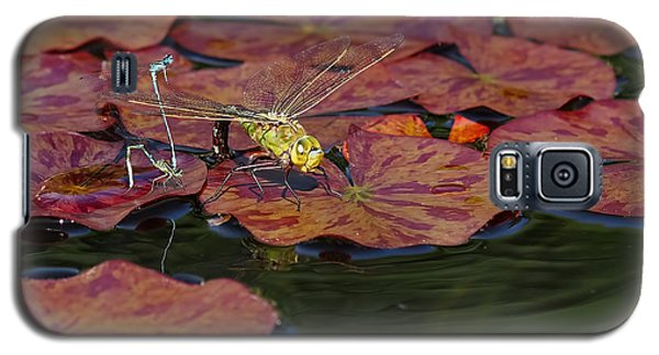 Green Darner Dragonfly With Friends Galaxy S5 Case