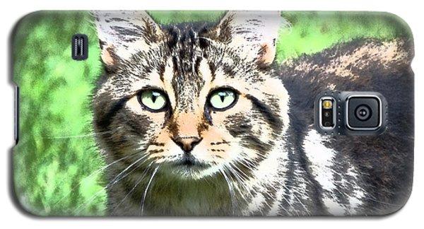 Green Eyed Cat Galaxy S5 Case