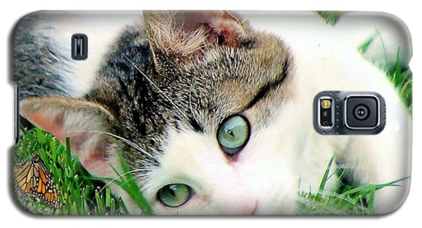 Galaxy S5 Case featuring the photograph Green Eyed Cat by Janette Boyd