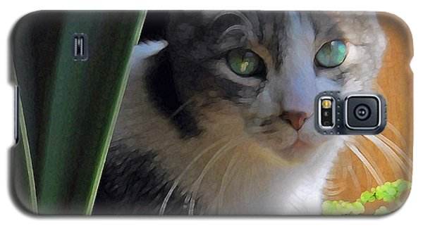 Green Eyed Cat Galaxy S5 Case