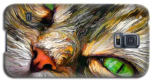 Green-eyed Tortie Galaxy S5 Case