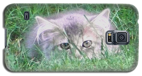 Galaxy S5 Case featuring the photograph Green Eyes by Gena Weiser