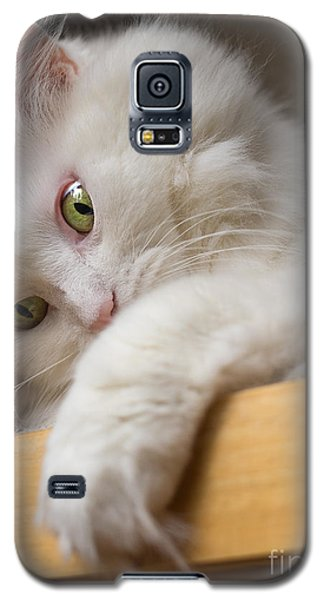 Green Eyes Galaxy S5 Case