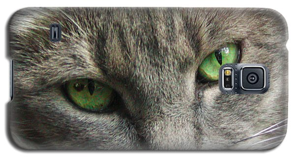 Green Eyes Galaxy S5 Case by Leigh Anne Meeks