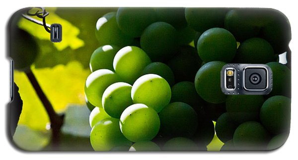 Green Grapes Galaxy S5 Case